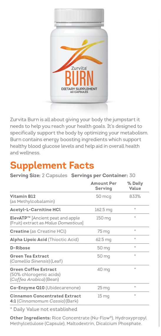 burn fact sheet