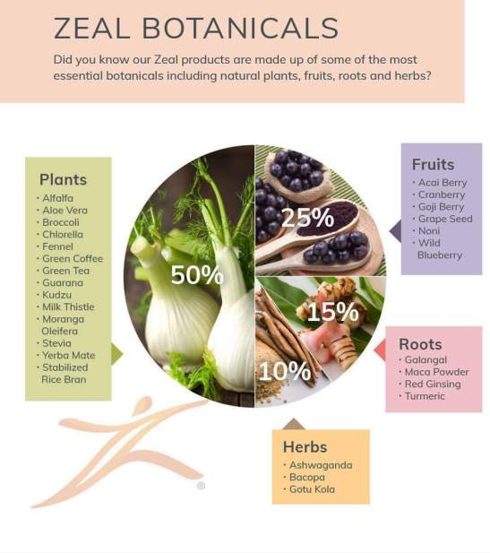 Zeal wellness ingredients are packed with antioxidants, vitamins and nutrients